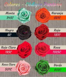 colores rosas eternas