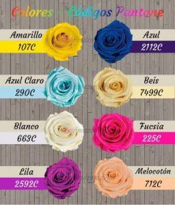 colores rosas eternas 2