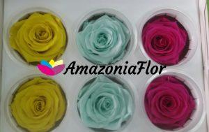 rosas-eternas-cajas-surtidas