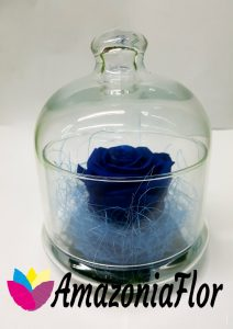 Rosa eterna en cristal